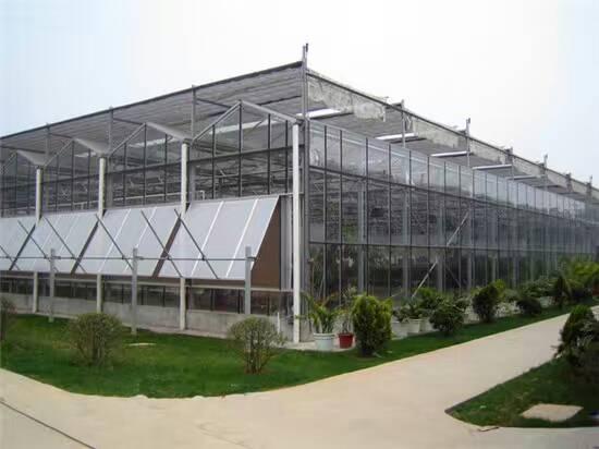 建造连栋温室大棚1.jpg