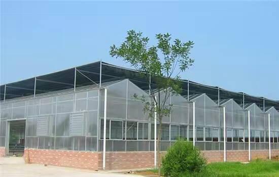 建造连栋温室大棚2.jpg
