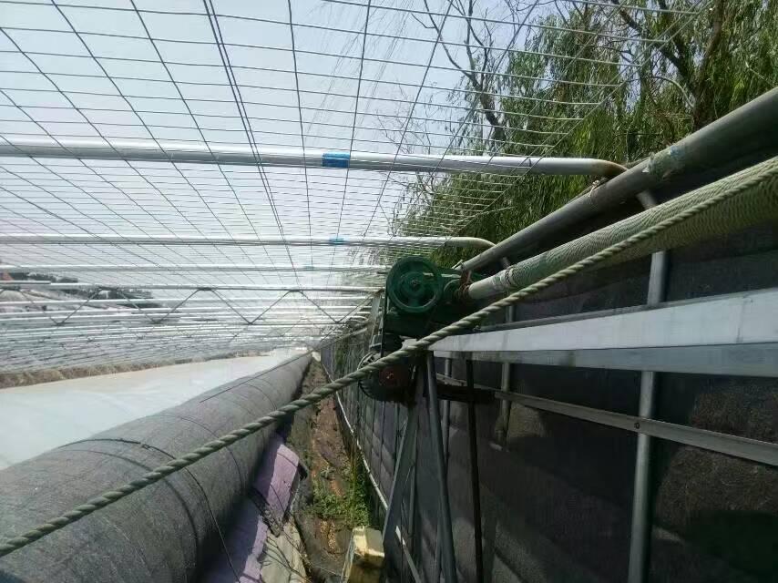 种植反季节蔬菜各地温度不同选择的温室类型也不同4.jpg