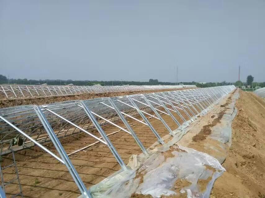 几型钢日光温室大棚的5大优点解析2.jpg