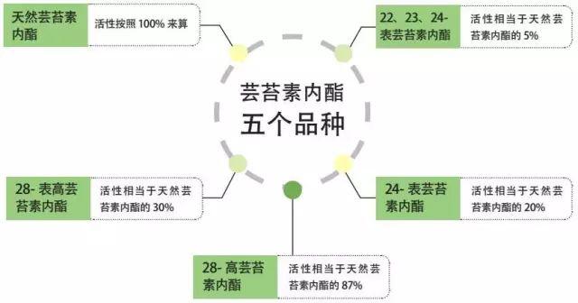 芸苔素内酯五大品种